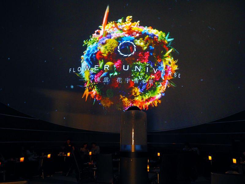 羽田空港に宇宙空間?「プラネタリウム スターリー カフェ」の美絶景がすごい!