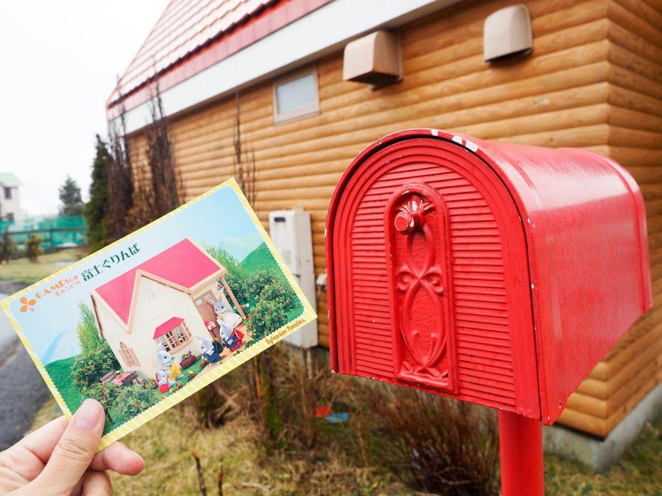 翌朝のお楽しみは、森の仲間から届くお手紙