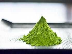 浅草で世界一新鮮な抹茶を。和カフェ「かぐらちゃかプチ 浅草店」オープン!
