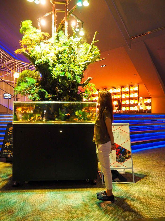 巨大な植物と金魚がリミックス