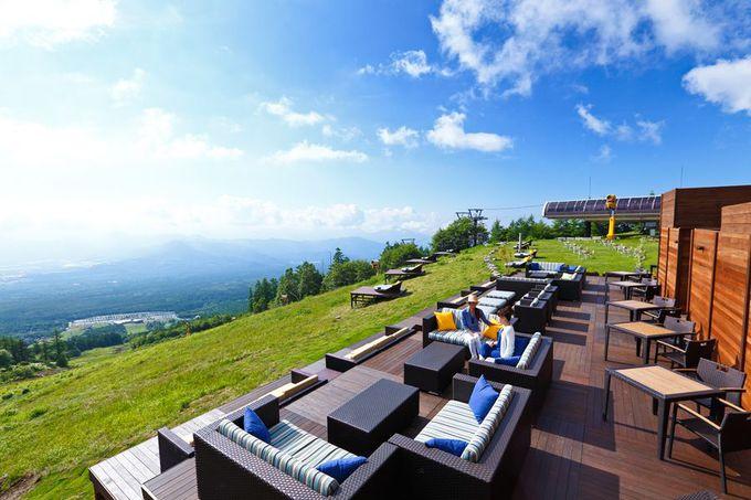 八ヶ岳ブルーの空と森を見渡せる「清里テラス」
