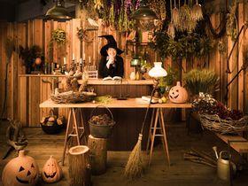 星野リゾートが魔女の宅急便の世界に!リゾナーレ熱海「ハロウィンイベント」