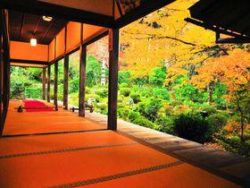 京都の紅葉は誰もいない寺社で!「京都ブライトンホテル」特別プラン2018