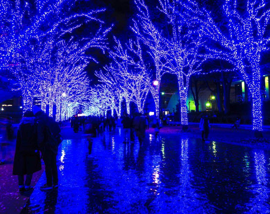 「青の洞窟」が渋谷で復活!幻想イルミネーションで青い魔法にかかろう