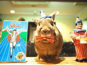 大阪・心斎橋で泊まるなら!ミナミを満喫できるホテル10選