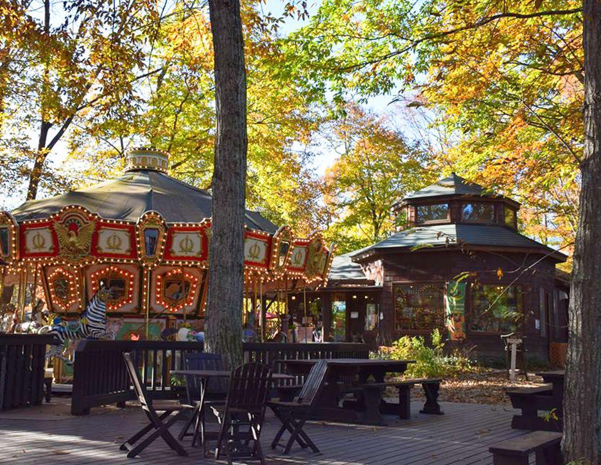 清里の森に溶け込む「メリーゴーラウンドカフェ」