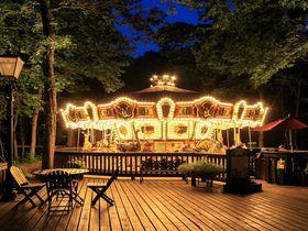 清里の森が突如ロマンチック空間に!「メリーゴーラウンドカフェ」