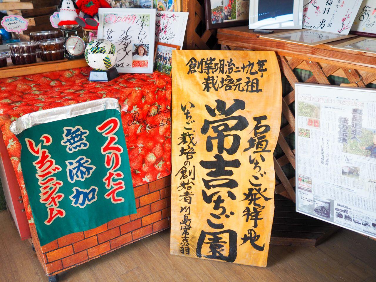 1株との出会いが、日本のいちご栽培を成功させた