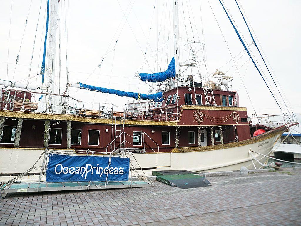 1800年代の豪華客船オーシャンプリンセスがパッケージに