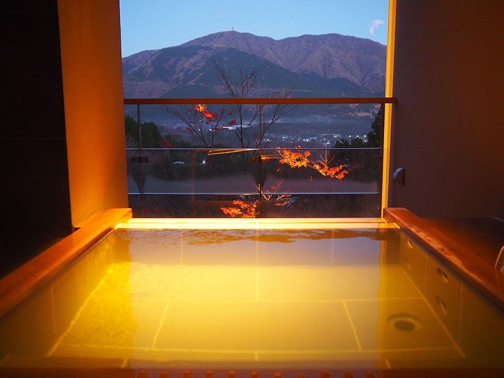 「星野リゾート 界 仙石原」の客室はこんなタイプ