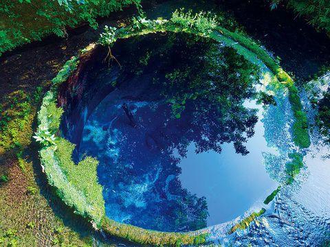 神秘のブルーホール!静岡「柿田川公園」で所要時間60分の絶景旅