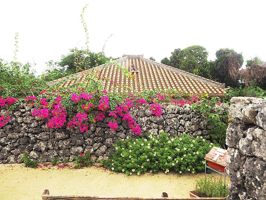冬でもあったか!八重山諸島の中で一番人気の竹富島