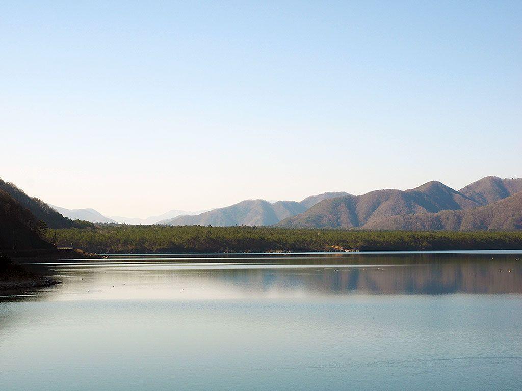 富士山が生み出す美しい森、樹海を気軽に楽しもう