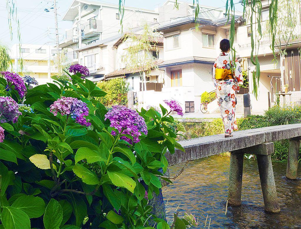 非日常気分に浸れる「古川町商店街」でレトロ散歩