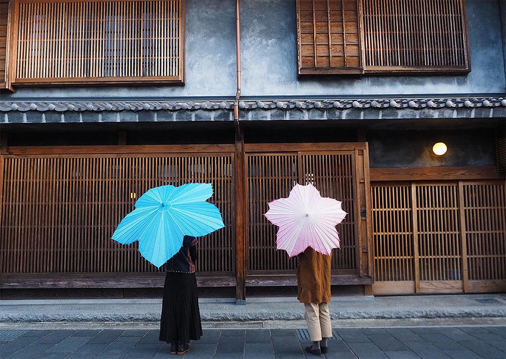 1年待ち!?SNSで話題沸騰の桜和傘