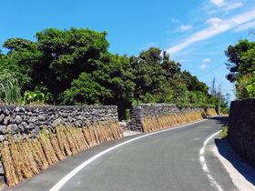 セサミストリートがある喜界島。鹿児島の秘境グルメを知る、食べる