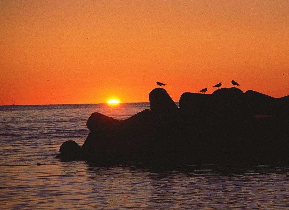 絶景の夕日ショーを楽しめる温泉リゾート