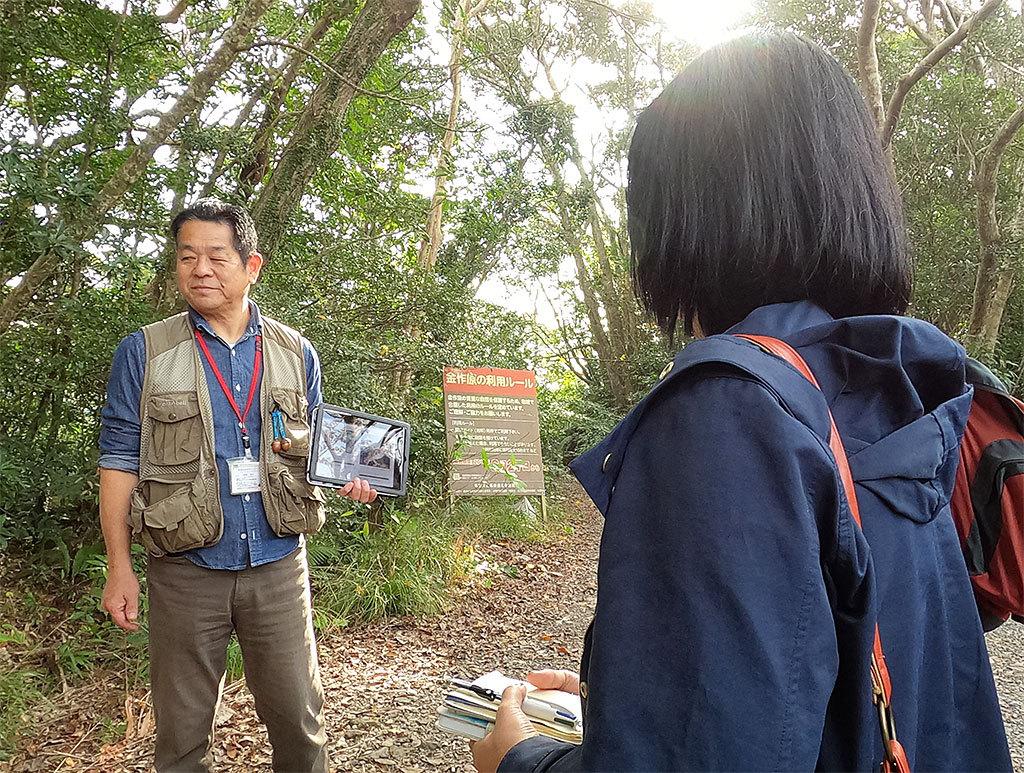 奄美の人気観光スポット、金作原原生林ってどんな場所?