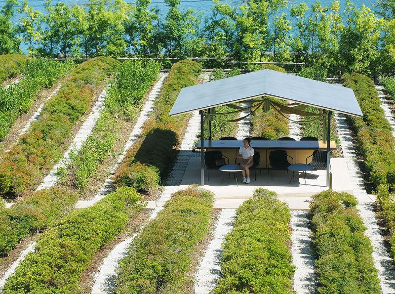 お茶づくしの温泉旅館 静岡「星野リゾート 界 遠州」で非日常体験!