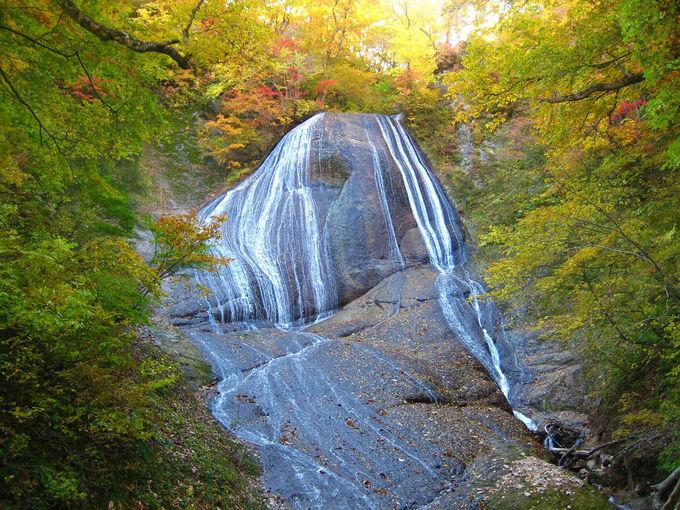 動画でスヌーピーの滝を楽しんで!