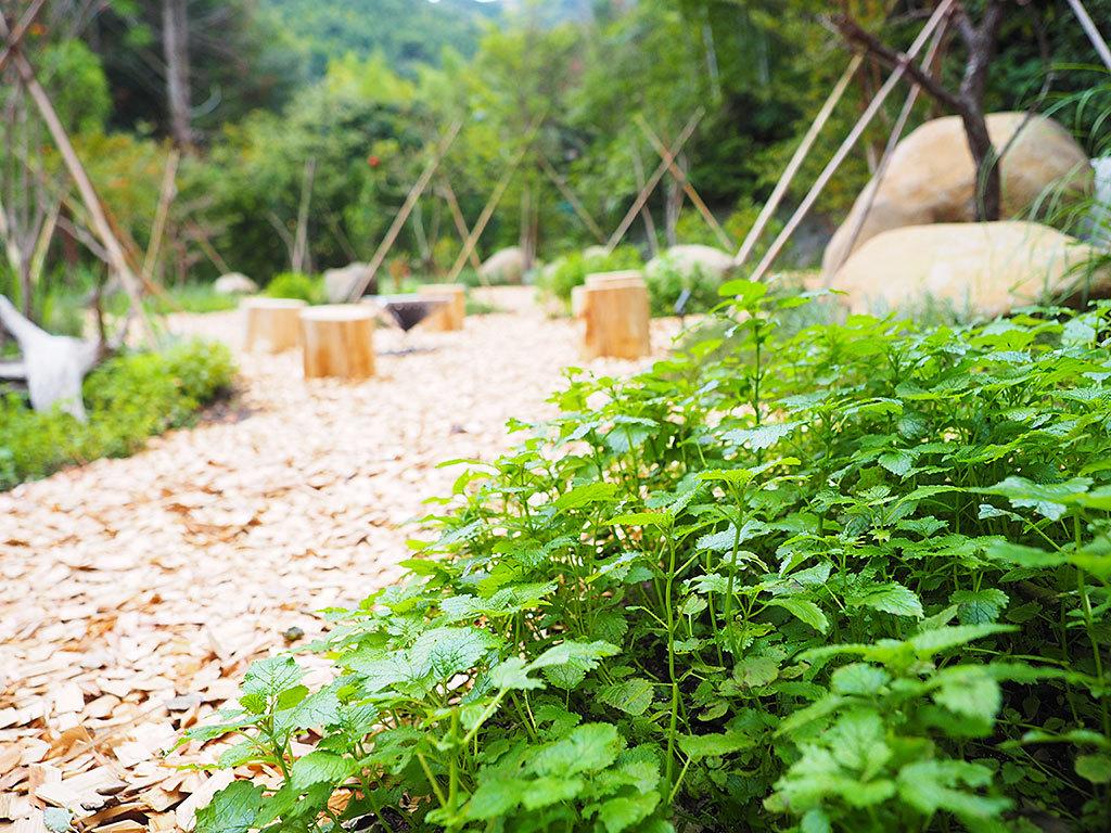 絶景テラス&食べられる庭でリフレッシュ