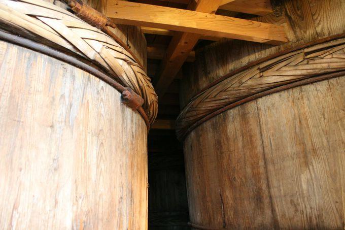 杉桶に代々からすみ付く酵母は300種以上