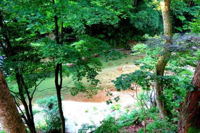 自然の恩恵を楽しむ宿「裏五頭山荘」
