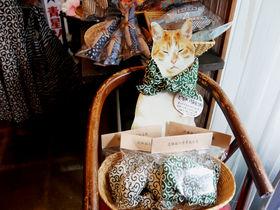 湯島天神から徒歩5分!猫好き恍惚の品揃え「王冠印雑貨店」