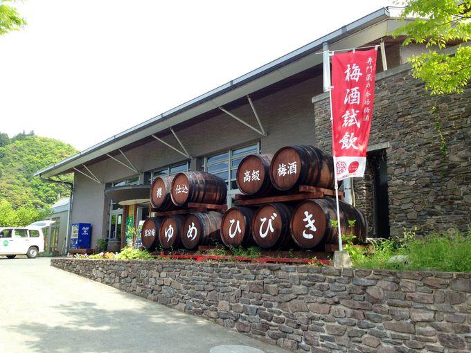 九州有数の梅の産地、大山町の高級梅酒