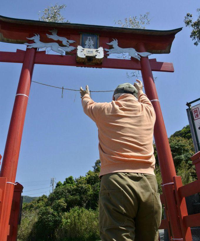 日本で一番入れにくい?賽銭箱