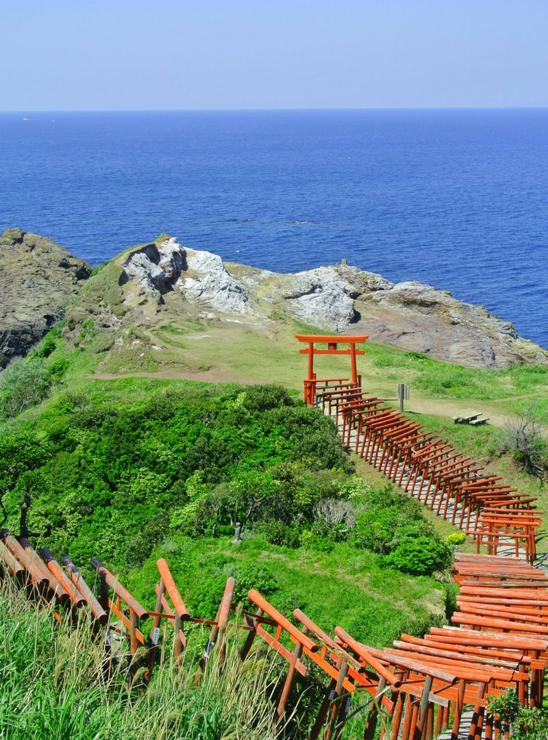 日本で一番〇〇しにくい?長門市「元乃隅稲成神社」は青と朱の対比が圧巻!