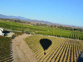 気球から絶景を一望!ワインカントリー、米国・テメキュラ