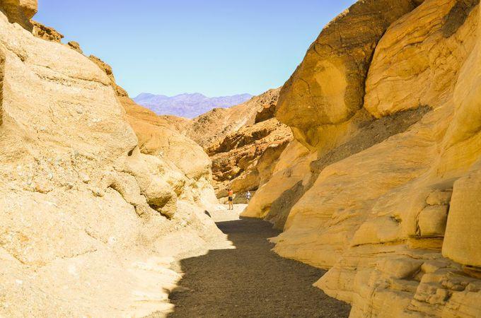 おすすめのトレッキングロードは「Mosaic Canyon」
