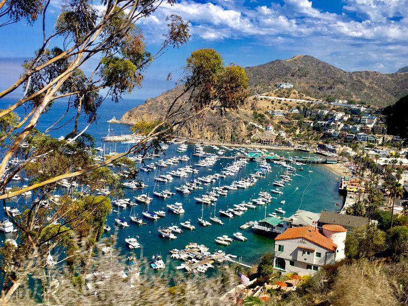 誕生日に行くとかなりお得!LA近郊、魅惑のリゾート「カタリナ島」