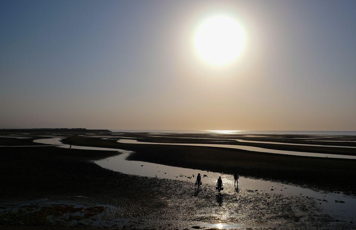 日本一?世界一?の干潟に沈む夕日