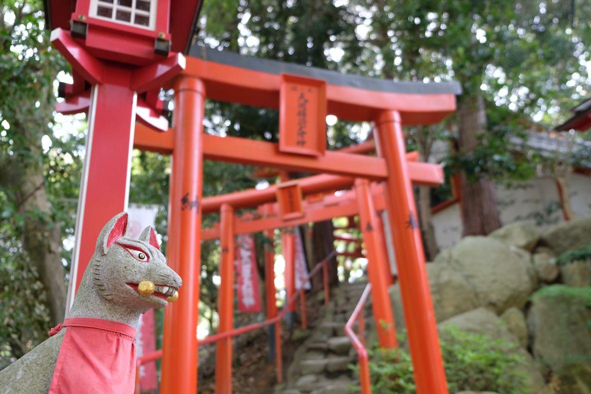 福岡の1日観光のランチ場所としても最適