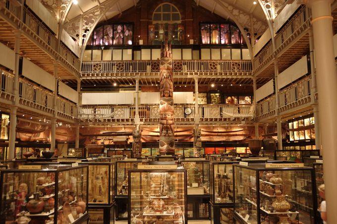 オックスフォード自然史博物館