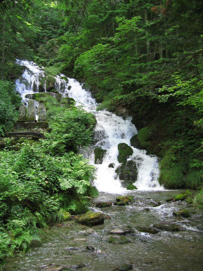 水しぶきが気持ちいい、神聖な「白金不動の滝」
