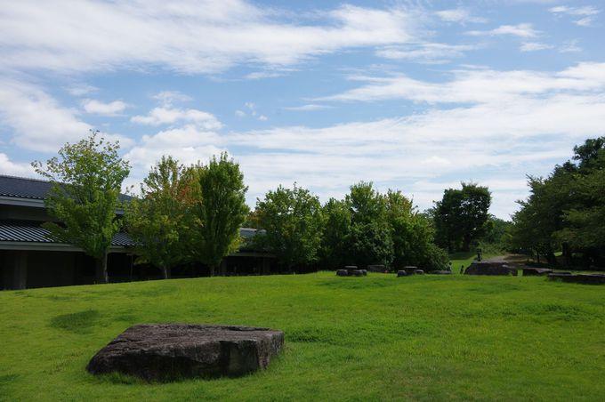 広大な敷地を擁する愛知県陶磁美術館