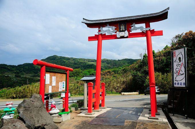 米CNNが選ぶ『日本の最も美しい場所31選』の1つ「元乃隅(もとのすみ)神社」