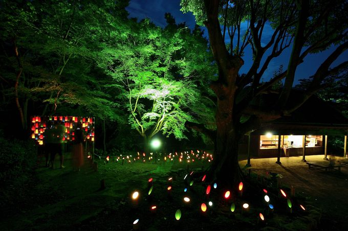 湖面プロジェクション以外に5000個の竹灯篭も