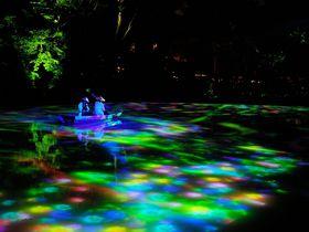 佐賀の幻想庭園「御船山楽園」チームラボの絶景アートで感動の夜を!!