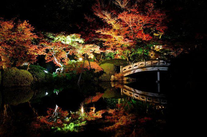 下関市「長府庭園灯りの祭典」
