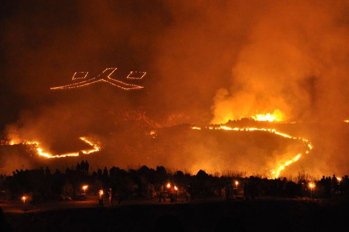 龍のように舞う炎!1500ヘクタールを焼きつくす野火の祭典「秋吉台山焼き」(山口)