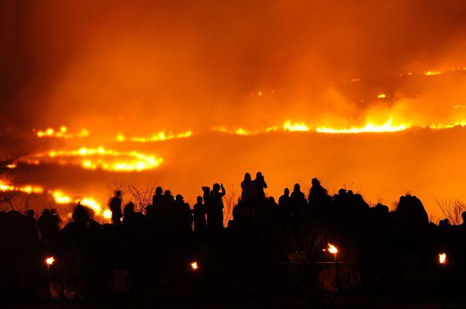 夜の山焼きはど迫力!!「野火の祭典」