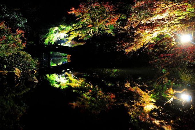 「長府庭園」は水面に映り込む紅葉が見事