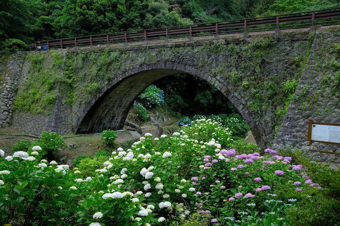 文化財のめがね橋と一緒に楽しむ〜萩市・三見橋