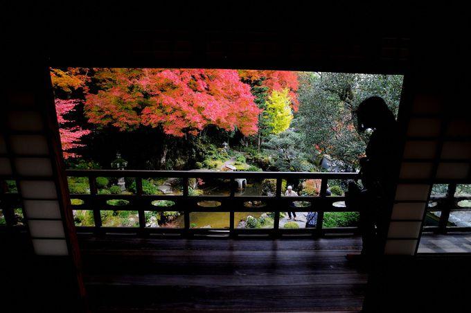 国指定名勝「堀庭園」〜絶景の紅葉は楽山荘2階から