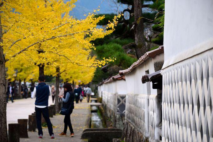 秋も美しい「山陰の小京都」津和野