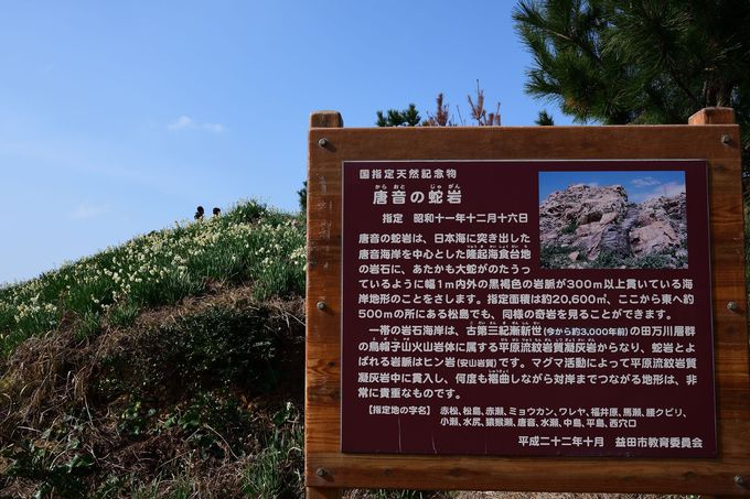 国指定天然記念物「唐音の蛇岩」も